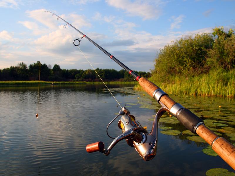 купить рыболовные удочки и спиннинги