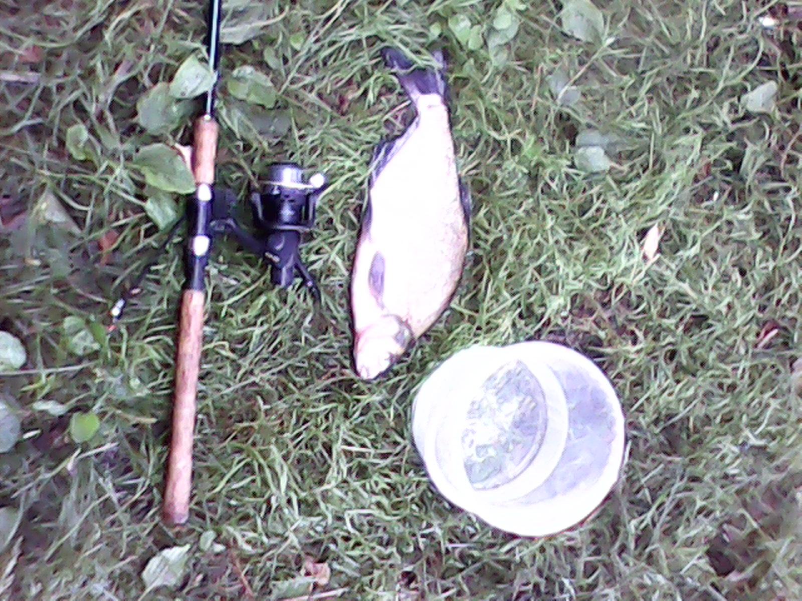 Ловля леща в августе